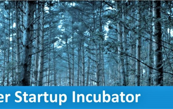 Timber Startup Incubator 2020 Event